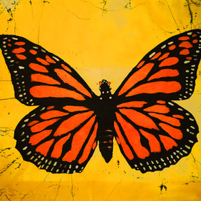 The Butterfly Trail Story (Ch.1~ The Monarch & the Checkerspot)