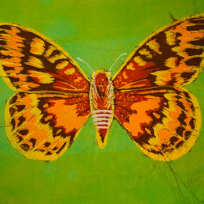 The Butterfly Trail Story (Ch.2~ The Fritillary & the Buckeye)