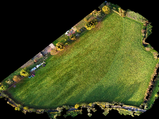 Using digital information from drones for topographical surveys