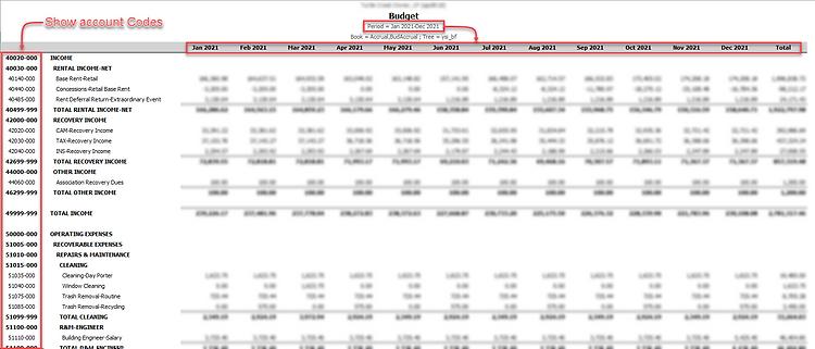 Yardi - 12-Month Budget Export.png