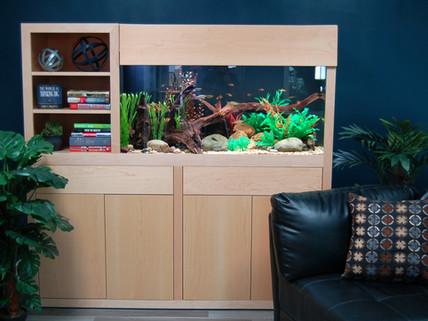 Fish Talk: Aquariums as Art