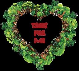treesformelogo.png