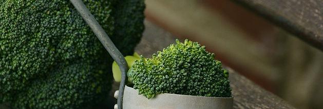 Feestzaal Saksenboom - Vegetarisch of veganistische gerechten