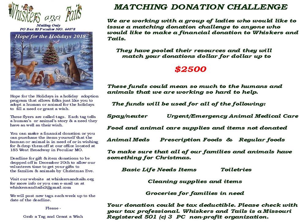 Matching Donation Challenge #1