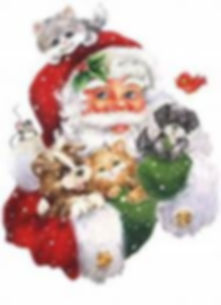 tb dog and santa x mas .jpg