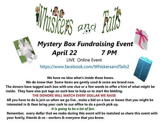 Mystery Box Event flyer for april 22 .jp