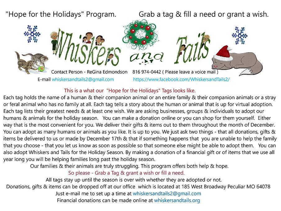 hope for the holidays tag page explanati