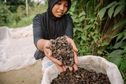 Lubuk Alung, Sumatra, Indonesia