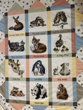 Baby Animals Minky Blanket
