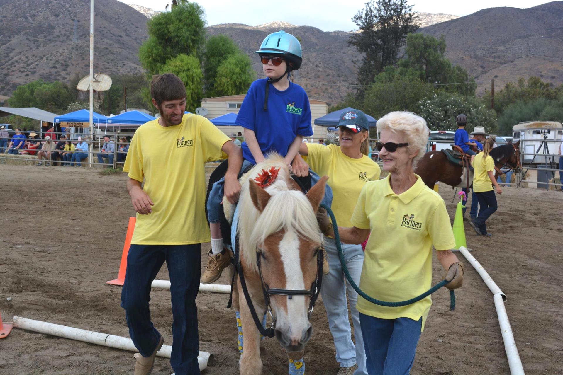 Horse show 2014