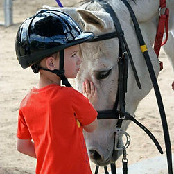 Jake and Murphy, therapeutic riding, horse therapy,special n