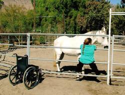 My horse is my legs.