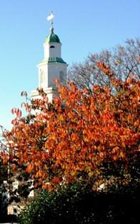 St Paul's in Autumn Leaves.jpg