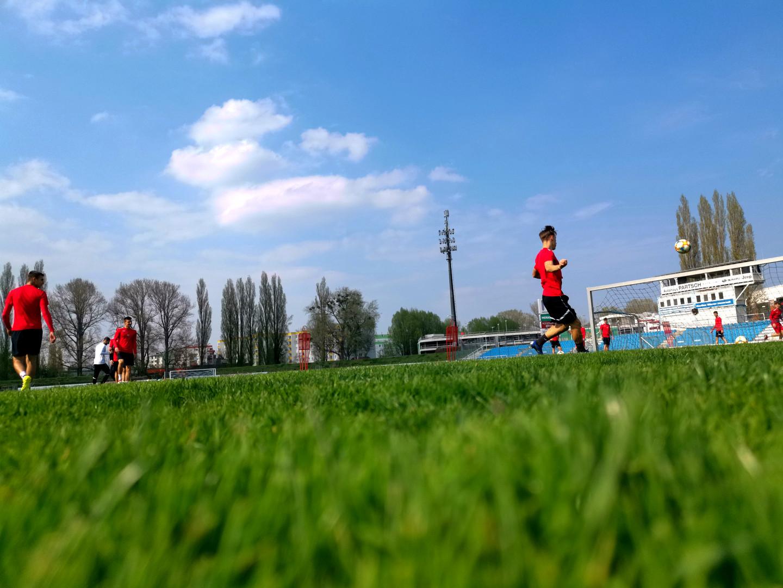 SC Wiener Neustadt - Training