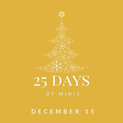 Dec 15 - 25 Days of Minis