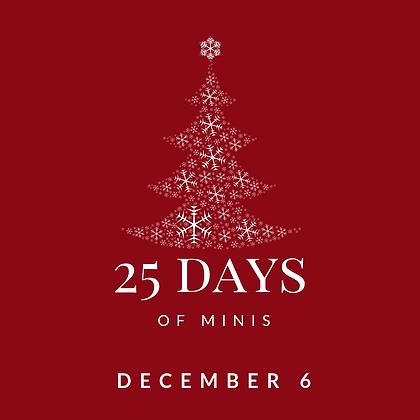 Dec 6 - 25 Days of Minis