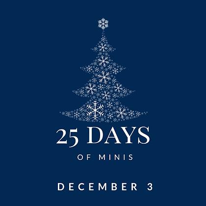 Dec 3 - 25 Days of Minis