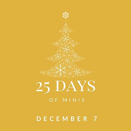Dec 7 - 25 Days of Minis