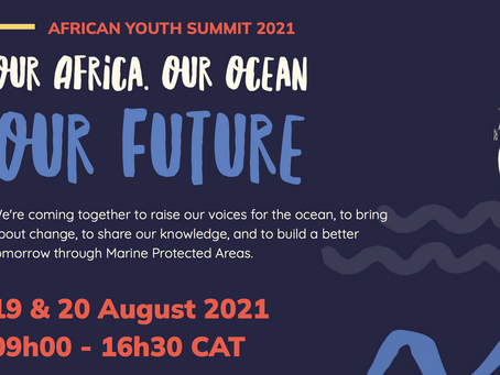 African Youth Summit 2021
