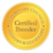 certified AKC DOBERMAN PUPPY BREEDER