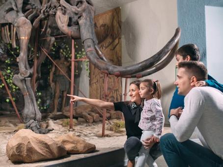 MUSEOS: 6 BENEFICIOS QUE PRODUCIRÁN EN TU FAMILIA