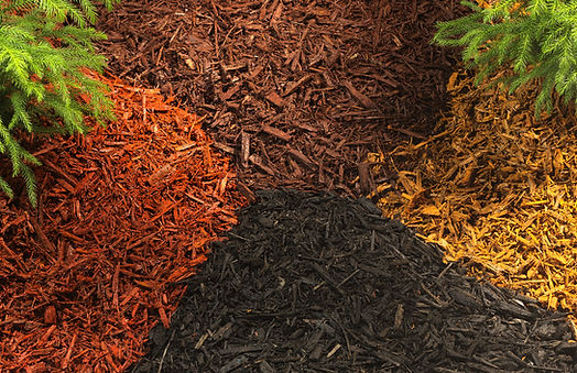 Coastal Quality Landscape Pavers Sod Mulch Irrigation Landscaping North Port  Port Charlotte Punta Gorda Englewood Venice Rotonda West