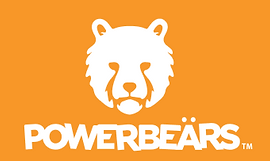 Powerbeärs - The Gamer in You!