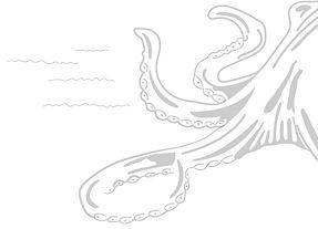 Kraken-Right.jpg