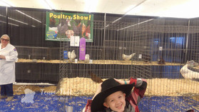 C.Springs Poultry Show 2019 (4).jpg