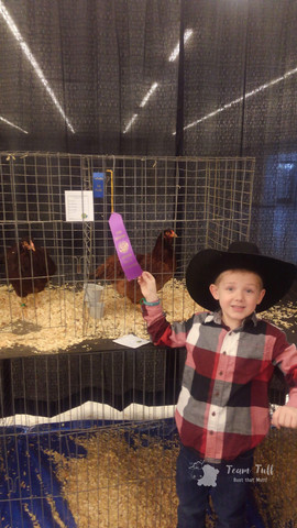 C.Springs Poultry Show 2019 (3).jpg