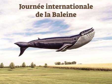 Journée internationale de la Baleine