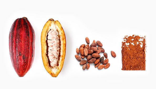 Cosse de cacao.jpg