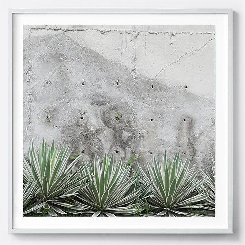 Printed Frame -Vila Canva