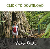Visitor Guide- CLICK TO DOWNLOAD.jpg
