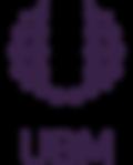UBM_logo_color.png
