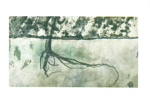 Imprint 1