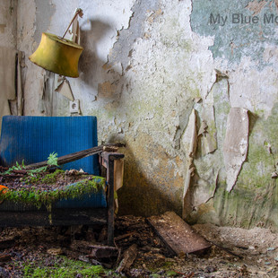 My Blue Mossy Chair