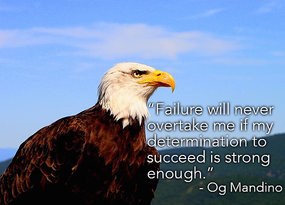 Eagle with quote on determination to succeed