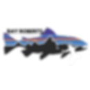 Ray Roberts Cornhole Region logo-2.png