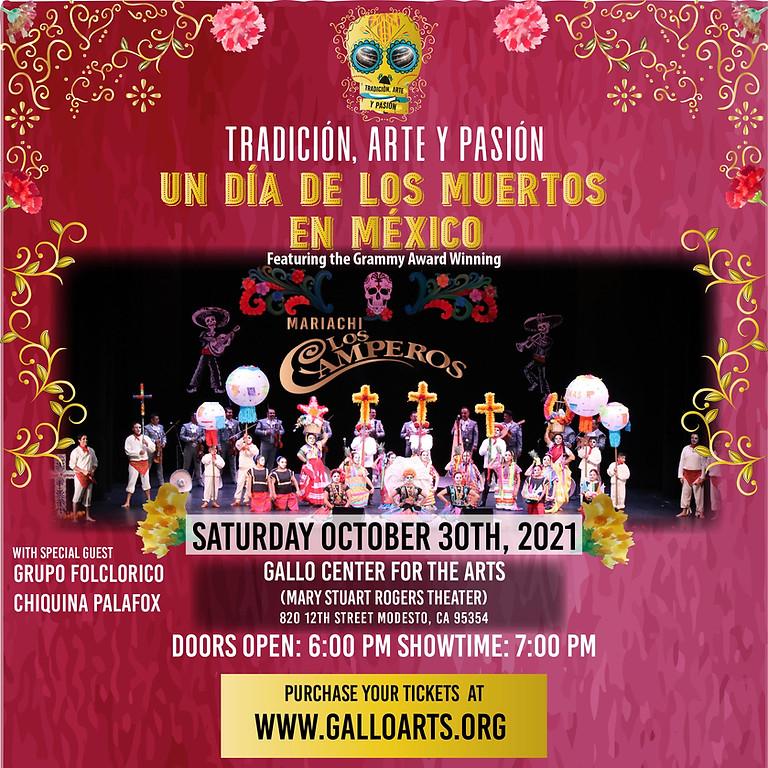 Tradicion, Arte y Pasion