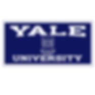 yael logo.png
