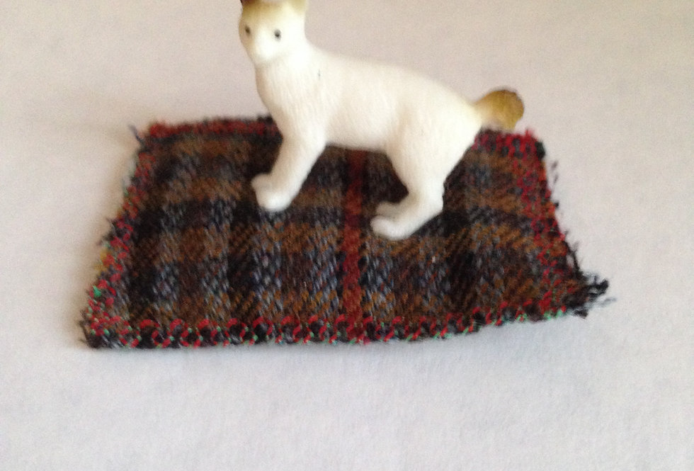 White cat on Plaid Rug