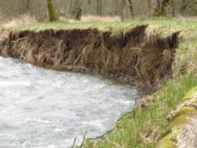 creek bank erosin.jpg