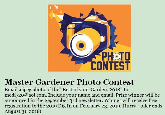 MG CAL 8-31-2018 Contest.JPG