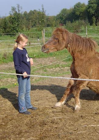 Kinderspaß_mit_Pferden.jpg
