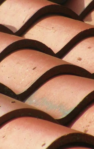 Honorable Mention Terra Cotta Roof, Circa 1907″ by Jennifer Martello