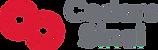 CS_logo_new.png