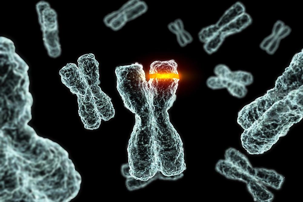 mutation on an x-chromosome