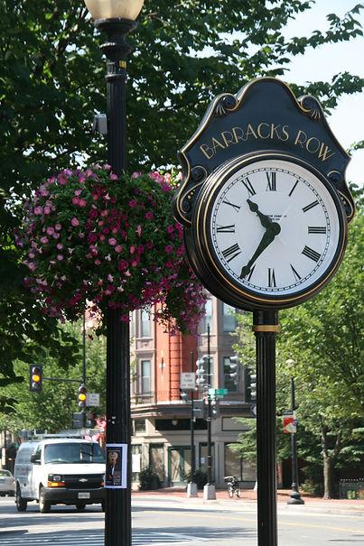 clock petunias-1.jpg