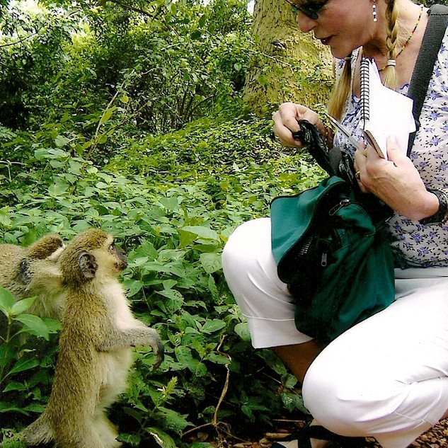 Penny monkey.jpg